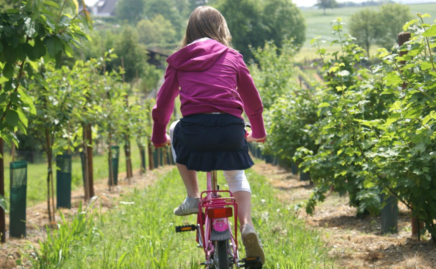 Iris op de fiets door de wijngaard...