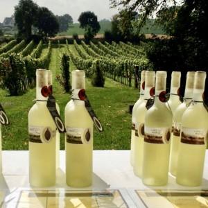 Serie flessen in de gaard 2015 met certificaat VIERKANT